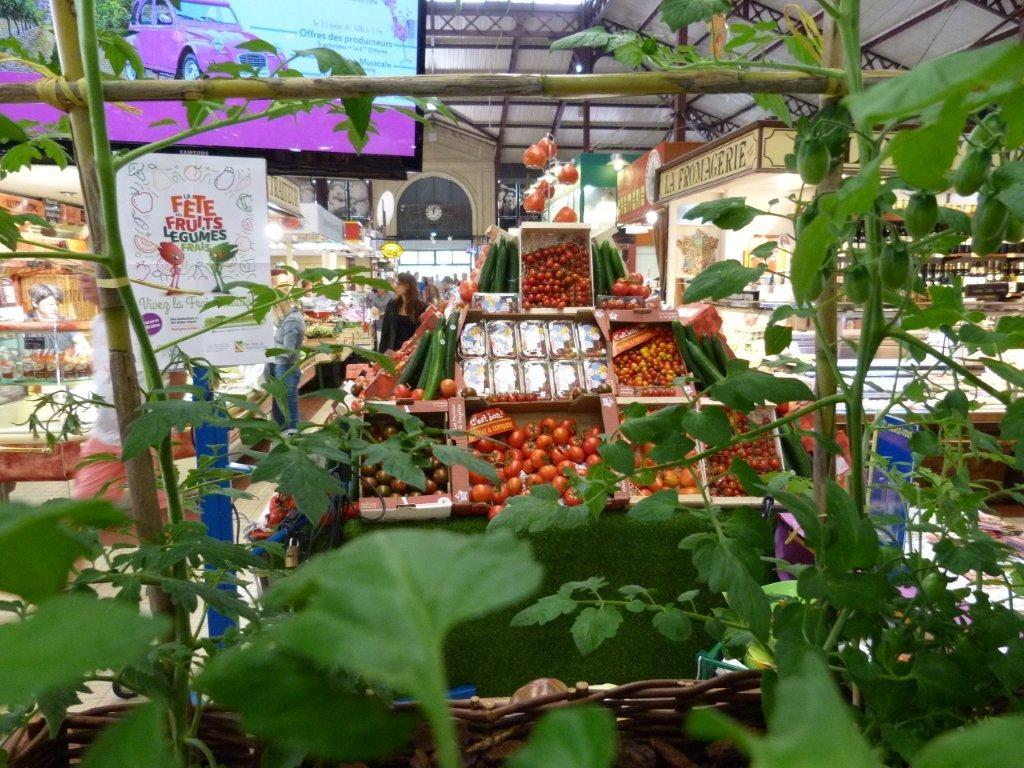 halles_narbonne_fete_fruits_legumes_frais_rougeline_15-06-2016-11
