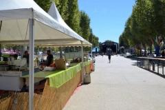 halles_narbonne_festival_barques_en_scene_2016-07