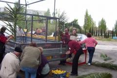 Halles_Narbonne_2004_-_Carnaval_(1)