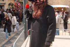 Halles_de_Narbonne_-Carnaval_2007_(2)
