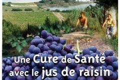 Halles_Narbonne_-_Cure_jus_de_raisin_&_Confreries_2008_(20)