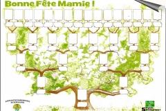 arbre-genealogique-halles_narbonne_retaille