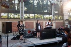 Fete-Musique-2010-7