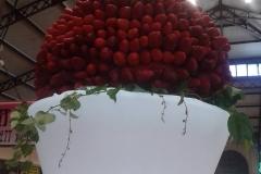 halles_narbonne_fraichattitude_fraise_abricot_tomate_melon_cerise_2014-06