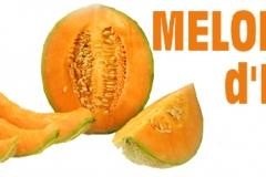 halles_narbonne_semaine_fraich_attitude_melon_primeurs_fruits_legumes_frais_2015