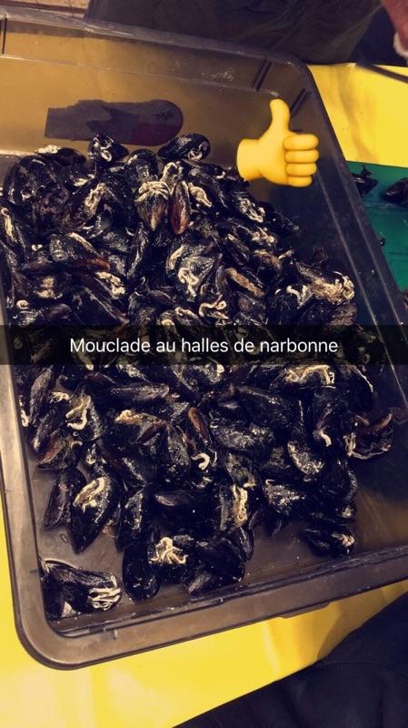 halles_narbonne_animation_poisson_poissonniers-4