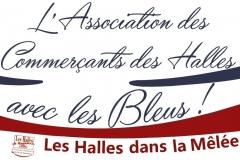 halles_de_narbonne_coupe_du_monde_rugby_2015-2