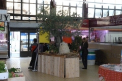les_halles_de_narbonne_semaine_du_gout_ateliers_pedagogiques_16-10-2013-14
