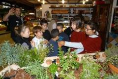 les_halles_de_narbonne_semaine_du_gout_ateliers_pedagogiques_2013-07
