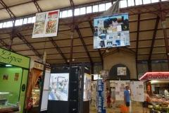 halles_de_narbonne_exposition_pierre_vacher_fabien_faure_2013-10
