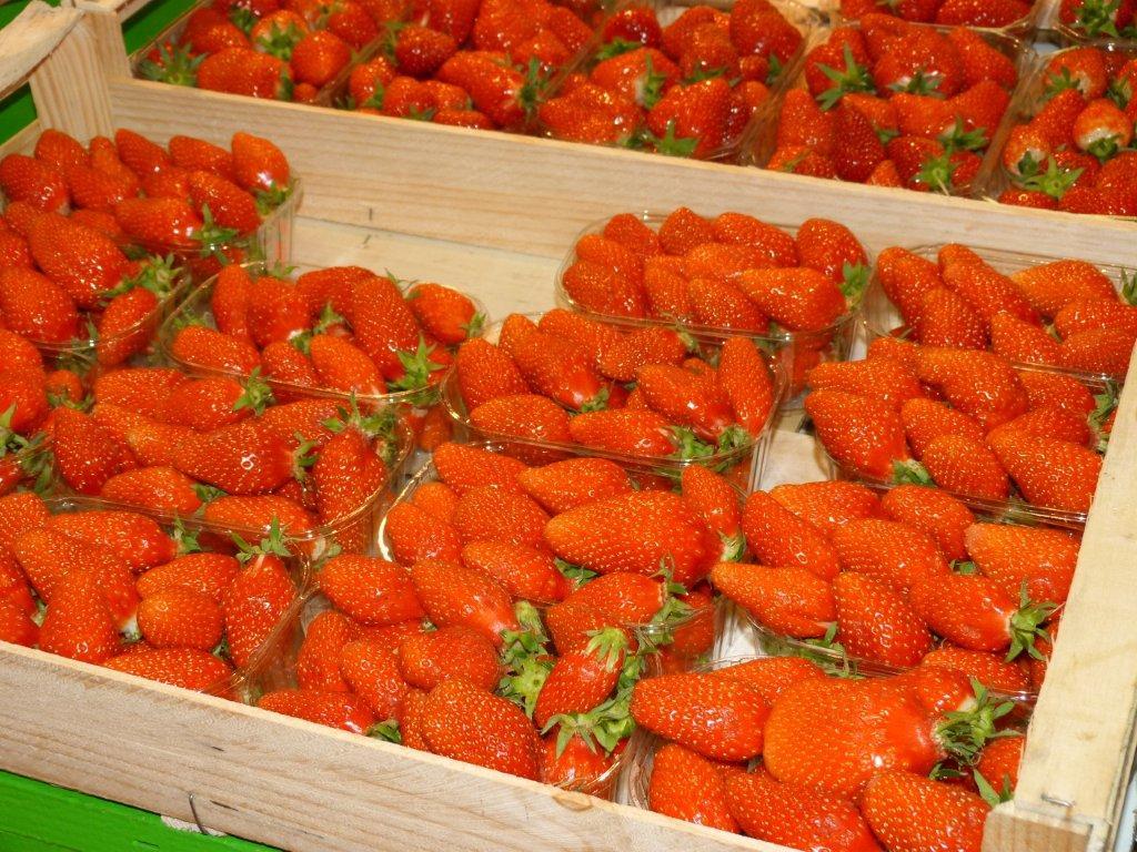 halles_de_narbonne_didier_et_yolande_armengaud-primeur_fruits_legumes_frais_promotion_produits_locaux-05