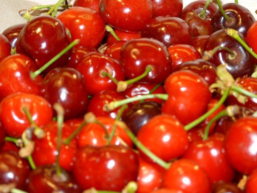 les_halles_de_narbonne_scprim_primeur_carlier_christophe_sylviane_fruits_legumes_frais_barenes-42