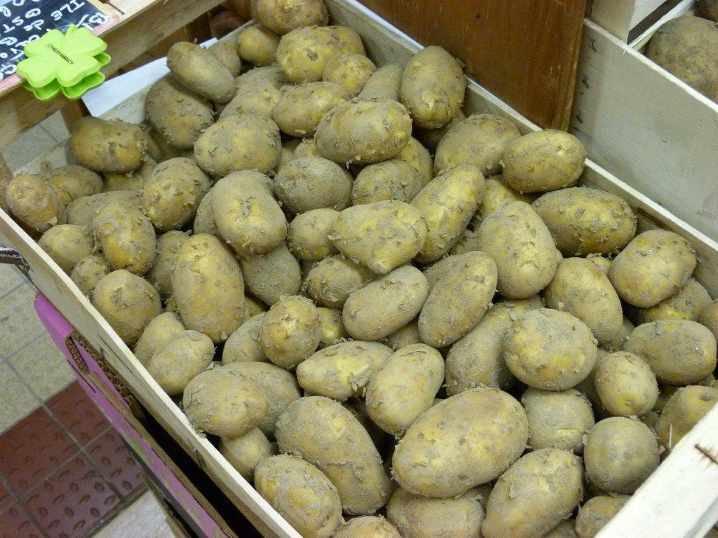 halles_de_narbonne_bio_nature_brigitte_guilhaumon_primeur_fruits_legumes_frais_promotion_produits_locaux-04