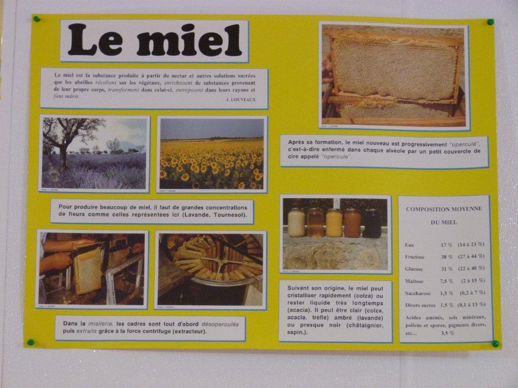 halles_narbonne_la-ruche-des-halles_miel_propolis_gelee-royale_sucettes_bonbons_26
