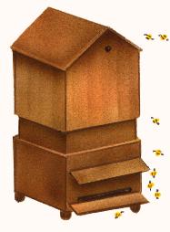 la ruche des halles 2