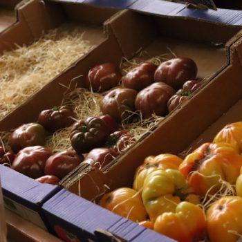 Tomates sur paille