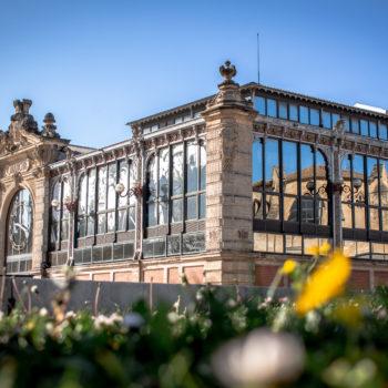 Les Halles, miroir d'architecture